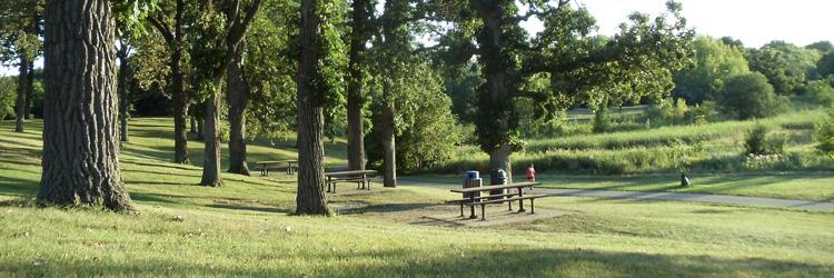 Battle Creek Regional Park picnic area
